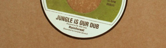 Rainforest 'Jungle Is Our Dub' (45 Seven)